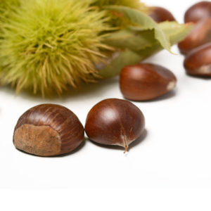 Marrons / Noisettes